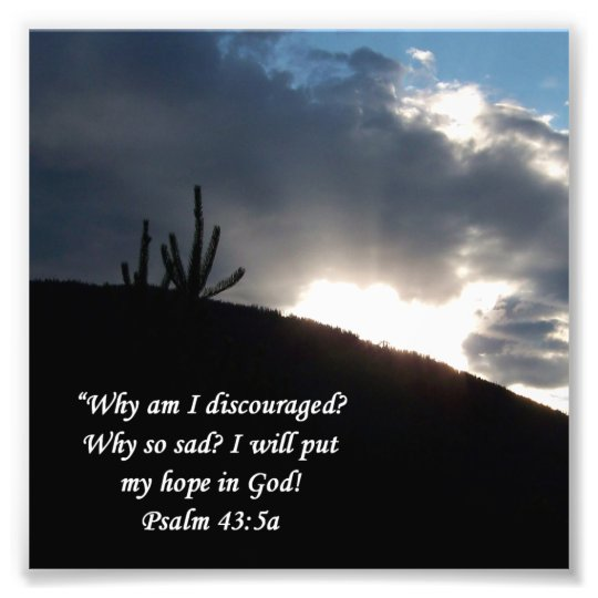 Desert Scene Psalm 43 5 Encouragement Print Zazzle Com