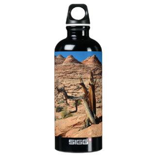desert SIGG traveler 0.6L water bottle