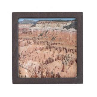 Desert Spikes Scene Premium Jewelry Boxes