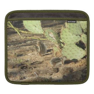 Desert Squirrels in Tucson iPad Sleeve