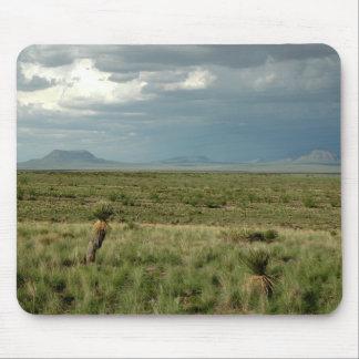 Desert Storm Mouse Pad