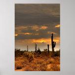 Desert Storm Print