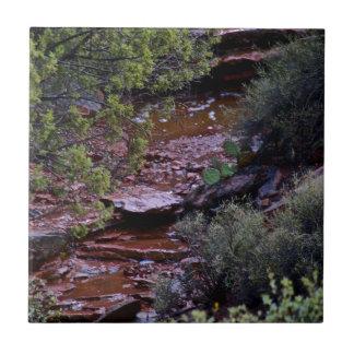 desert stream tile