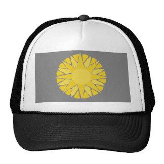 Desert Sun! grey Trucker Hat