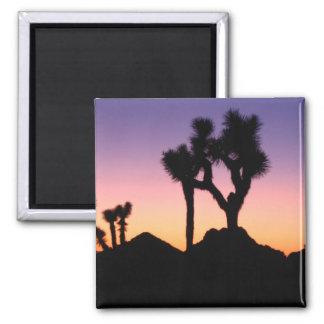 Desert Sunset 2 Inch Square Magnet