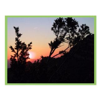 Desert Sunset Over The Sandia Mountains Postcard