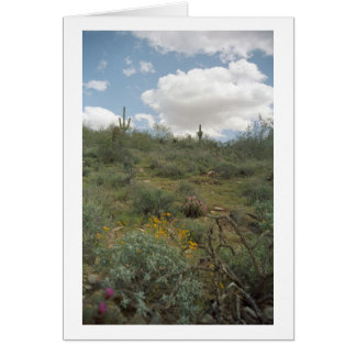Desert Symphony Greeting Cards or Note Cards
