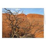 Desert Tannenbaum Greeting Card