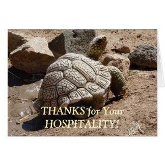 Desert Tortoise - Hospitality Thank You Card