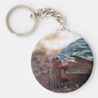Desert Tortoise Key Chain