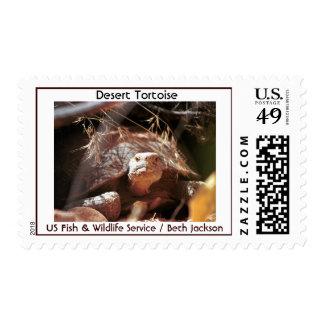 Desert Tortoise Stamp