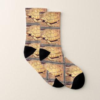 Desert Tortoise Unisex Socks