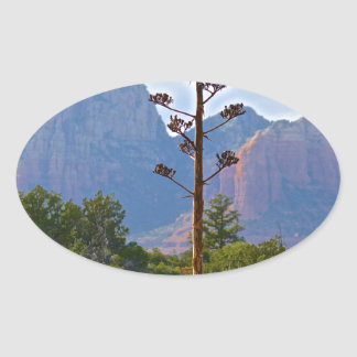 Desert trails Sedona Century plant Oval Sticker