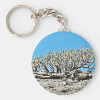 Desert Tree Keychains