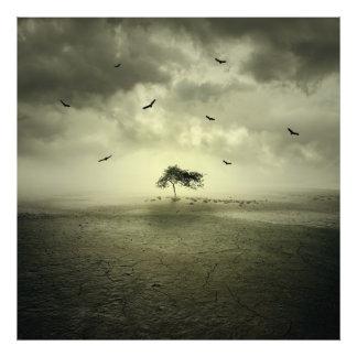Desert Tree Photo Art