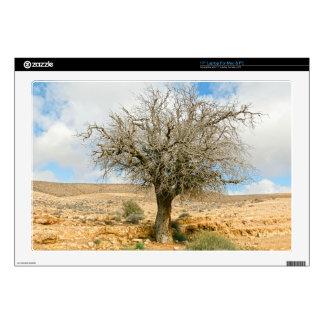 Desert tree surviving the heat skins for laptops