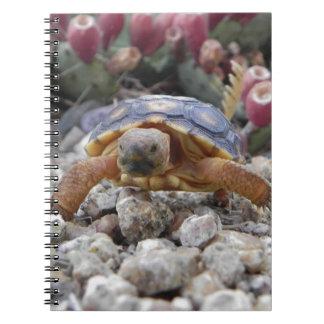 Desert Turtle Spiral Notebook