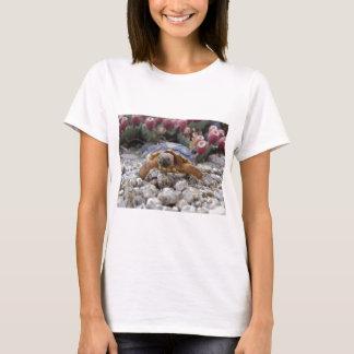 Desert Turtle T-Shirt