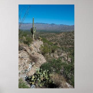 Desert View 20x30 Posters