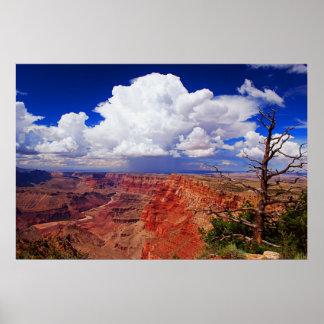 Desert View Storm [framed print]