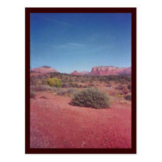Desert Vista Custom Postcard