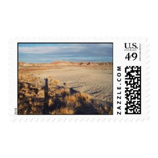 Desert Wave – Medium Postage