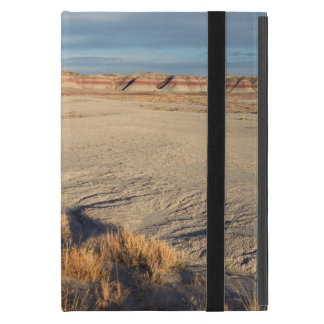 Desert Wave: Petrified Forest National Park Cover For iPad Mini