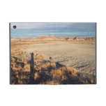 Desert Wave: Petrified Forest National Park iPad Mini Covers