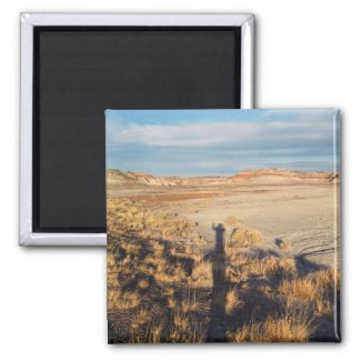 Desert Wave: Petrified Forest National Park Magnet