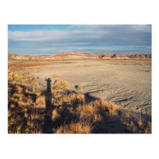 Desert Wave: Petrified Forest National Park Post Card