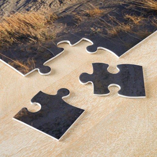 Desert Wave: Petrified Forest National Park Jigsaw Puzzles