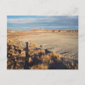 Desert Wave postcard