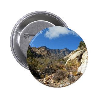 Desert Wilderness Pins