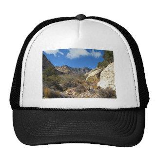 Desert Wilderness Trucker Hat