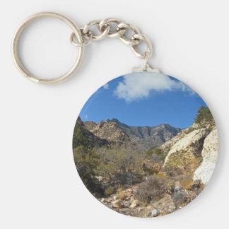 Desert Wilderness Keychain