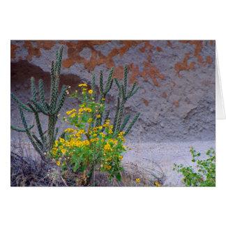 Desert Wildflowers Card