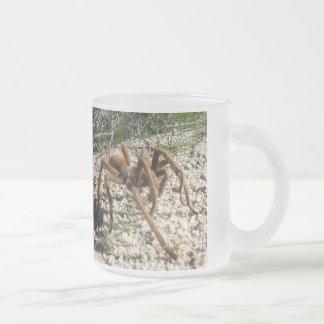 Desert Wildlife Tarantula Coffee Mug