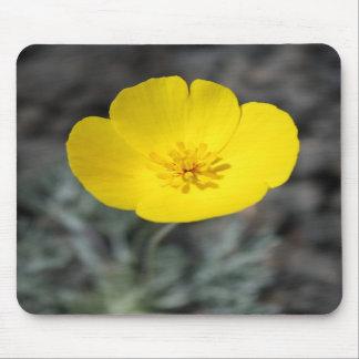 Desert Windflower Mousepad