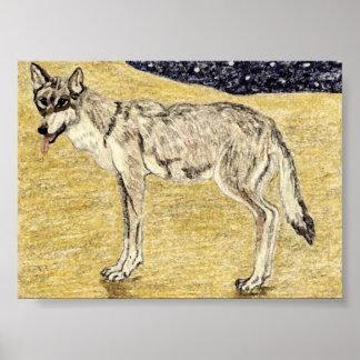 Desert Wolf Poster