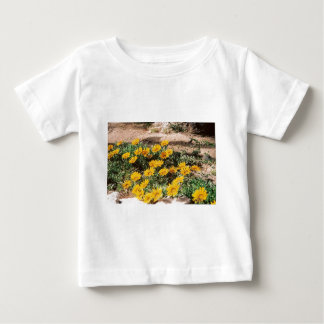 Desert Yellow Daisies Baby T-Shirt