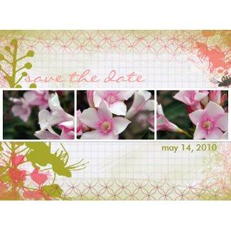 DesertBotanicals Postcard - graph floral postcard