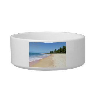 Deserted Beach Bowl