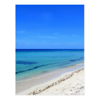 Deserted Cosumel Beach Calm Teal Water White Sand Postcard