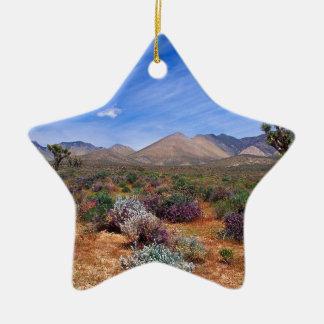 Deserts Bloom Conservation Area Ceramic Ornament