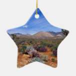 Deserts Bloom Conservation Area Christmas Ornament