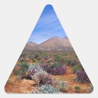 Deserts Bloom Conservation Area Triangle Sticker