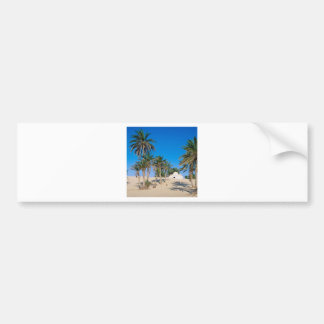 Deserts Near Douz Sahara Tunisia Bumper Sticker