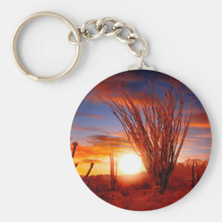 Deserts Ocotillo Sonora Arizona Key Chain