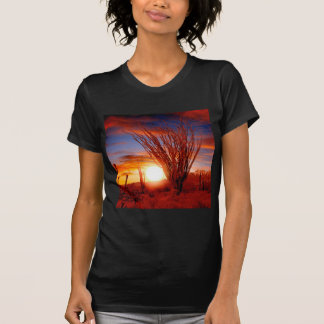 Deserts Ocotillo Sonora Arizona Tshirts