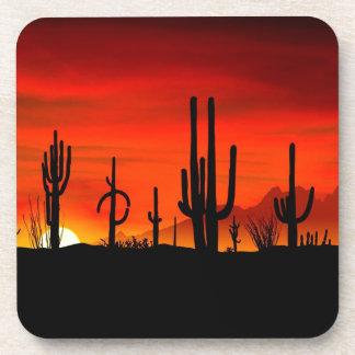 Deserts Saguaros Sonoran Arizona Coaster